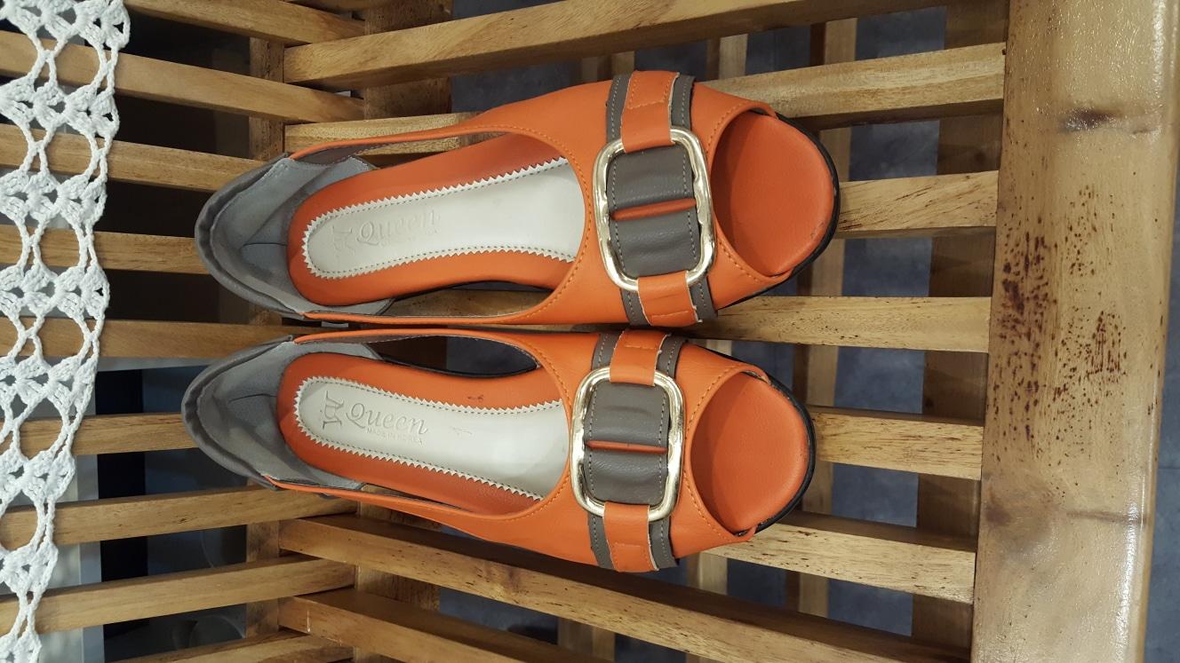 신발 245~250