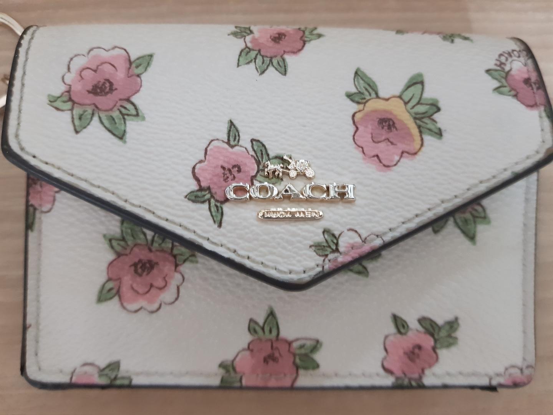 [COACH] 코치 여성 스카프 & 카드지갑