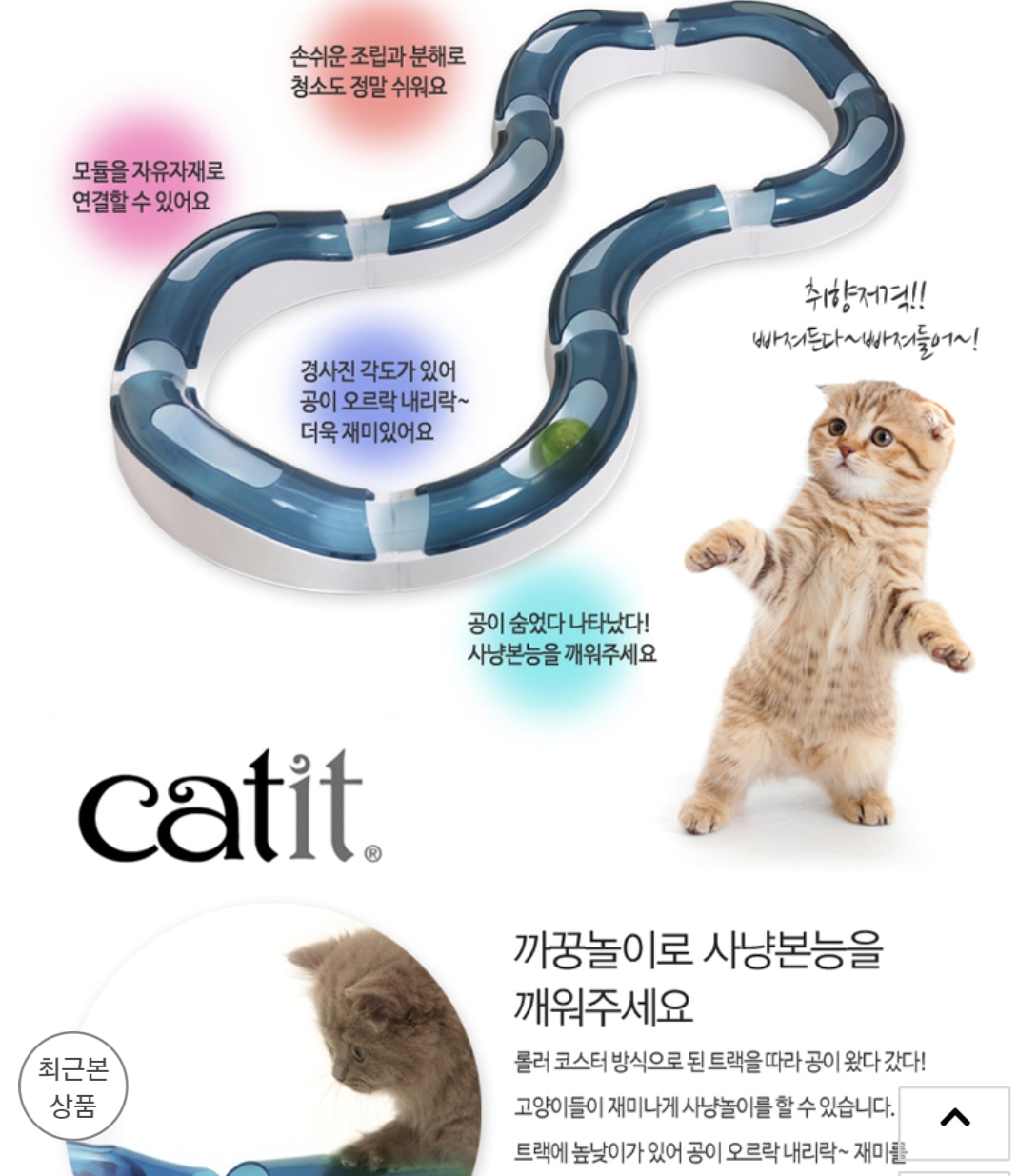 고양이 서킷 장난감