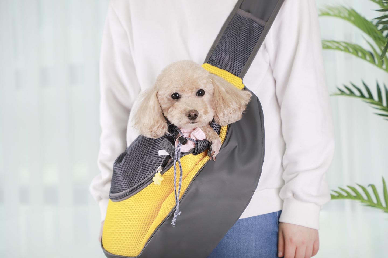 강아지 슬링백형 이동가방(새제품) 팝니다