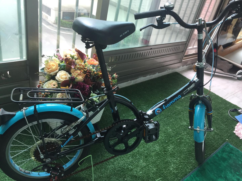 Alton 접이식 자전거(초등)