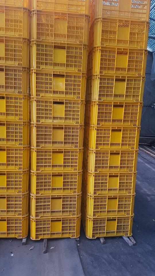 콘테나 4관짜리 판매합니다 720개 개당1500