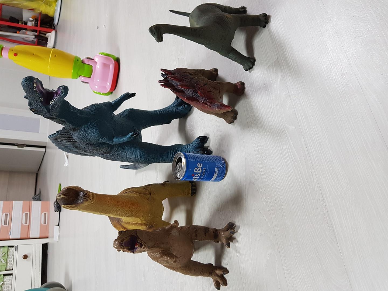 공룡5마리