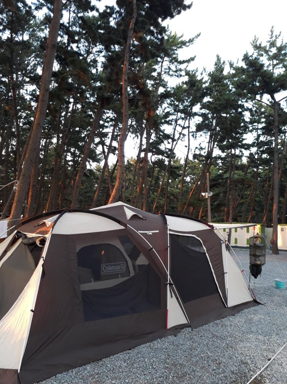 (텐트) 콜맨 웨더마스터 투룸하우스 텐트판매합니다