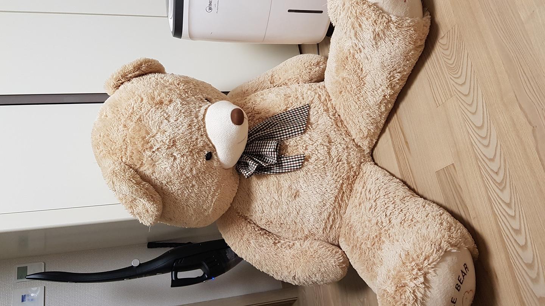 트롬대형곰인형(170cm)