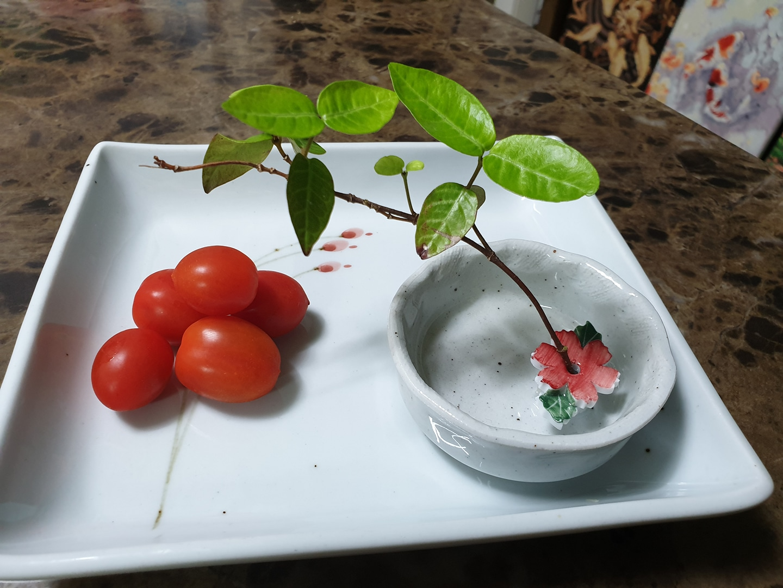 백자 꽃한송이 수반(진달래꽃 연분홍꽃)