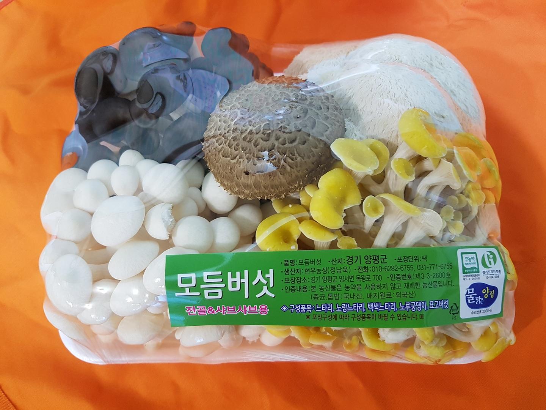 생버섯모듬세트1팩 850g