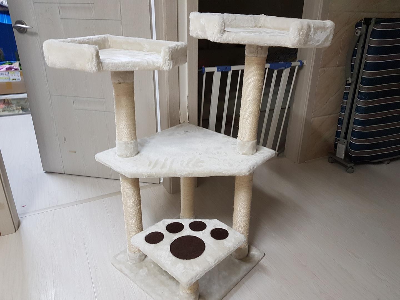 캣타워 고양이 타워