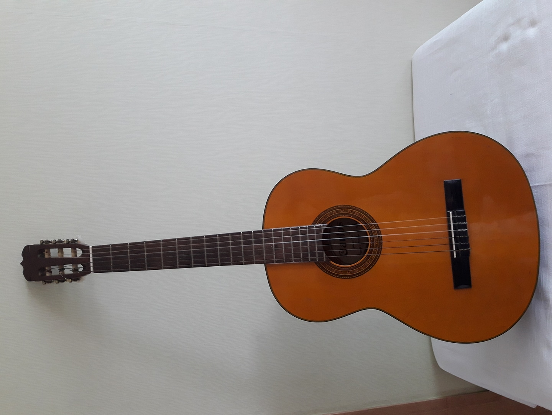 카를로스 클래식 기타