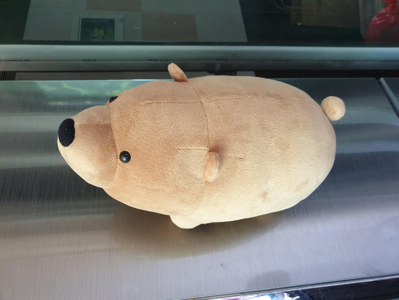 발바닥 자석 곰인형