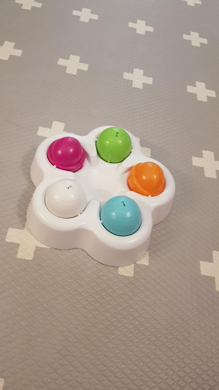 애견 노즈워크 장난감