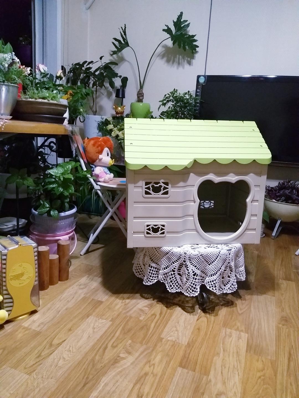 예쁜 반려동물 집