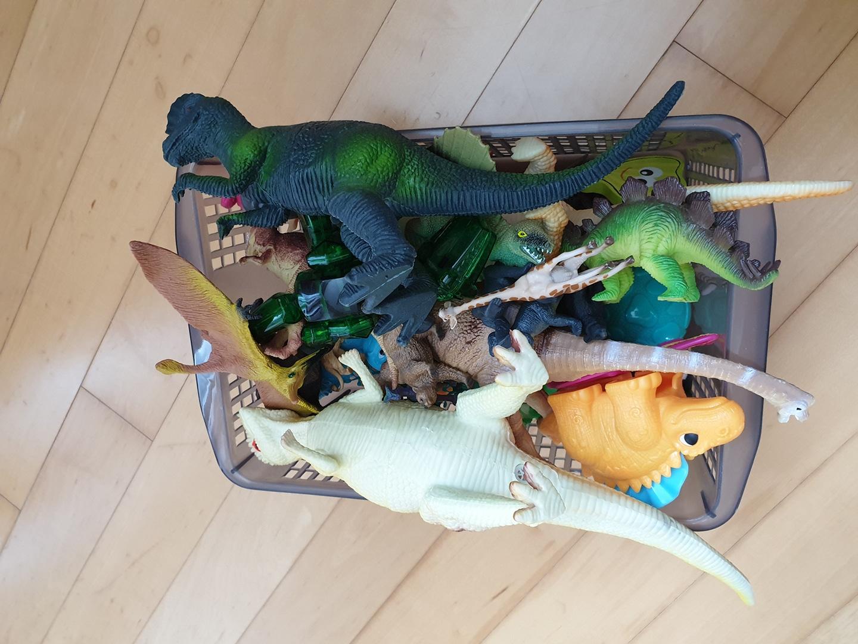 여러공룡과동물들