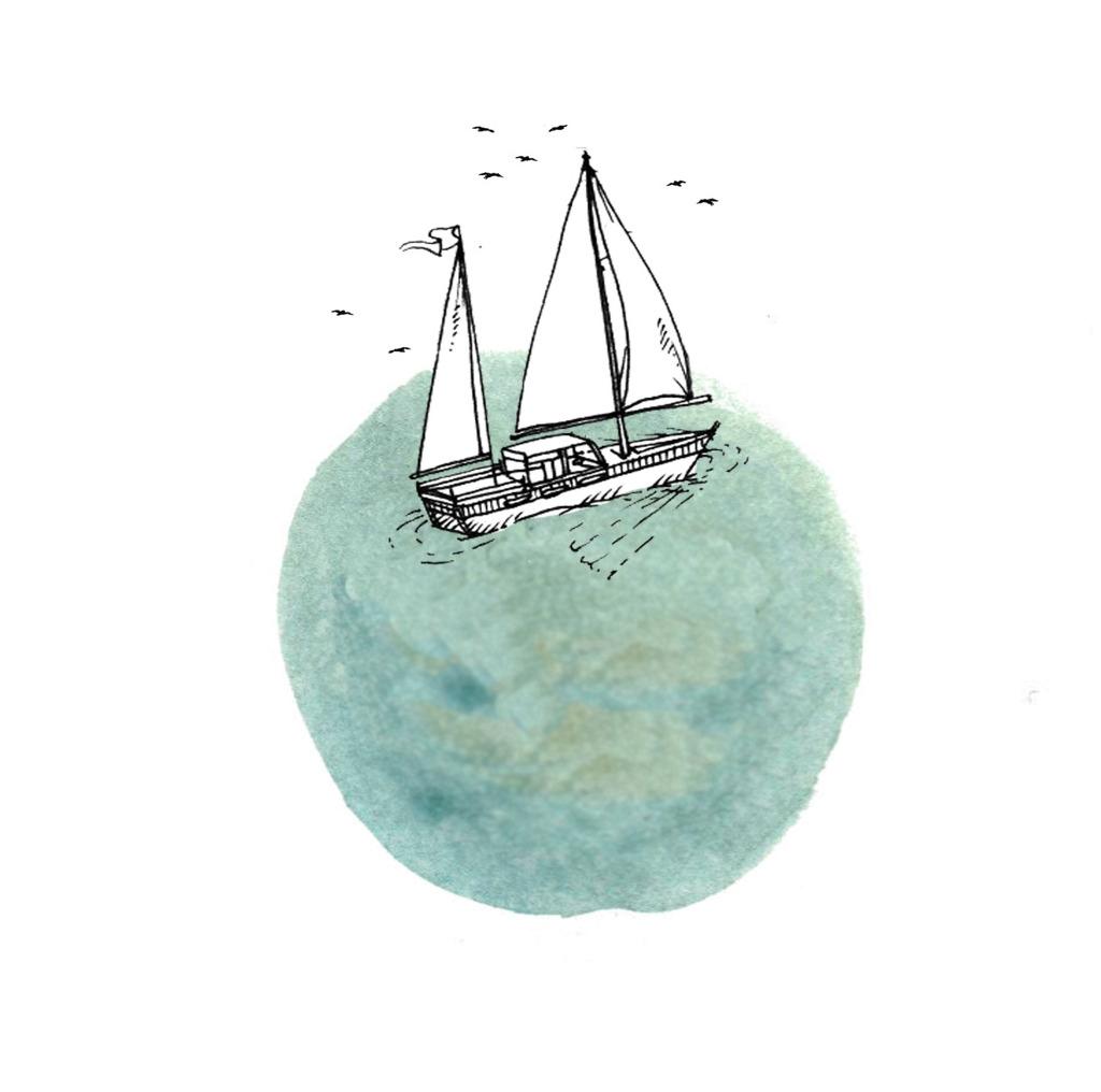 홍삼밀크티