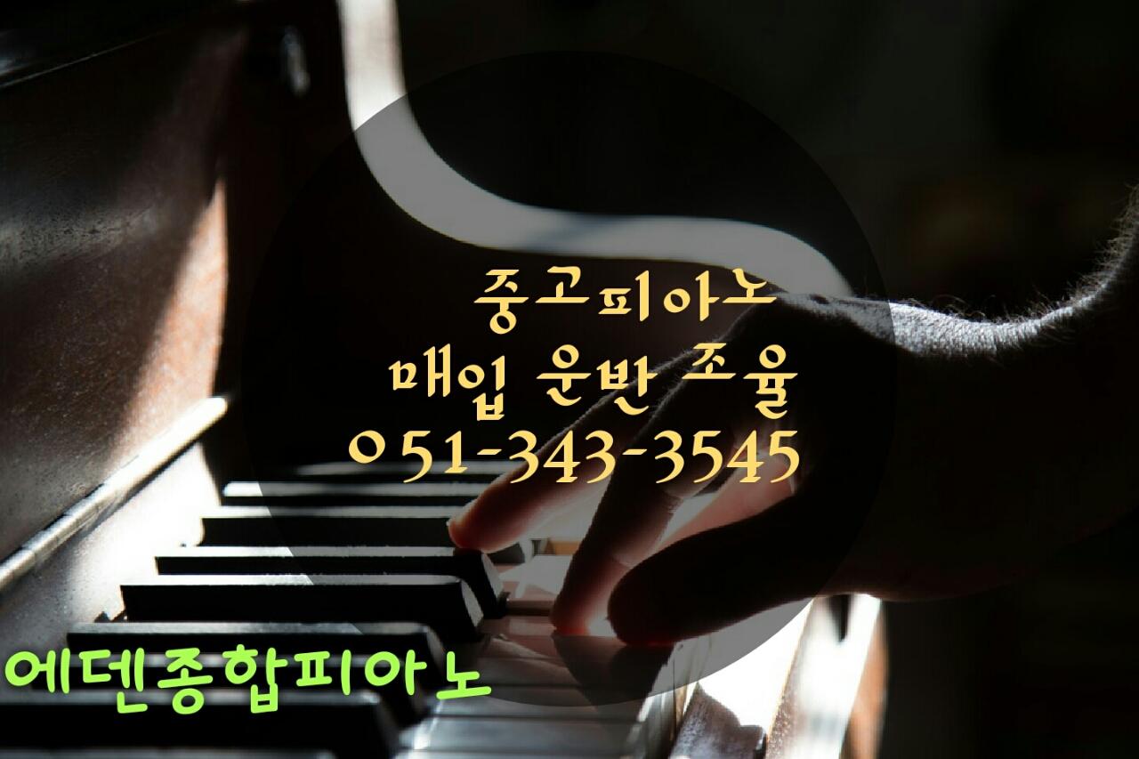 에덴종합피아노. 악기