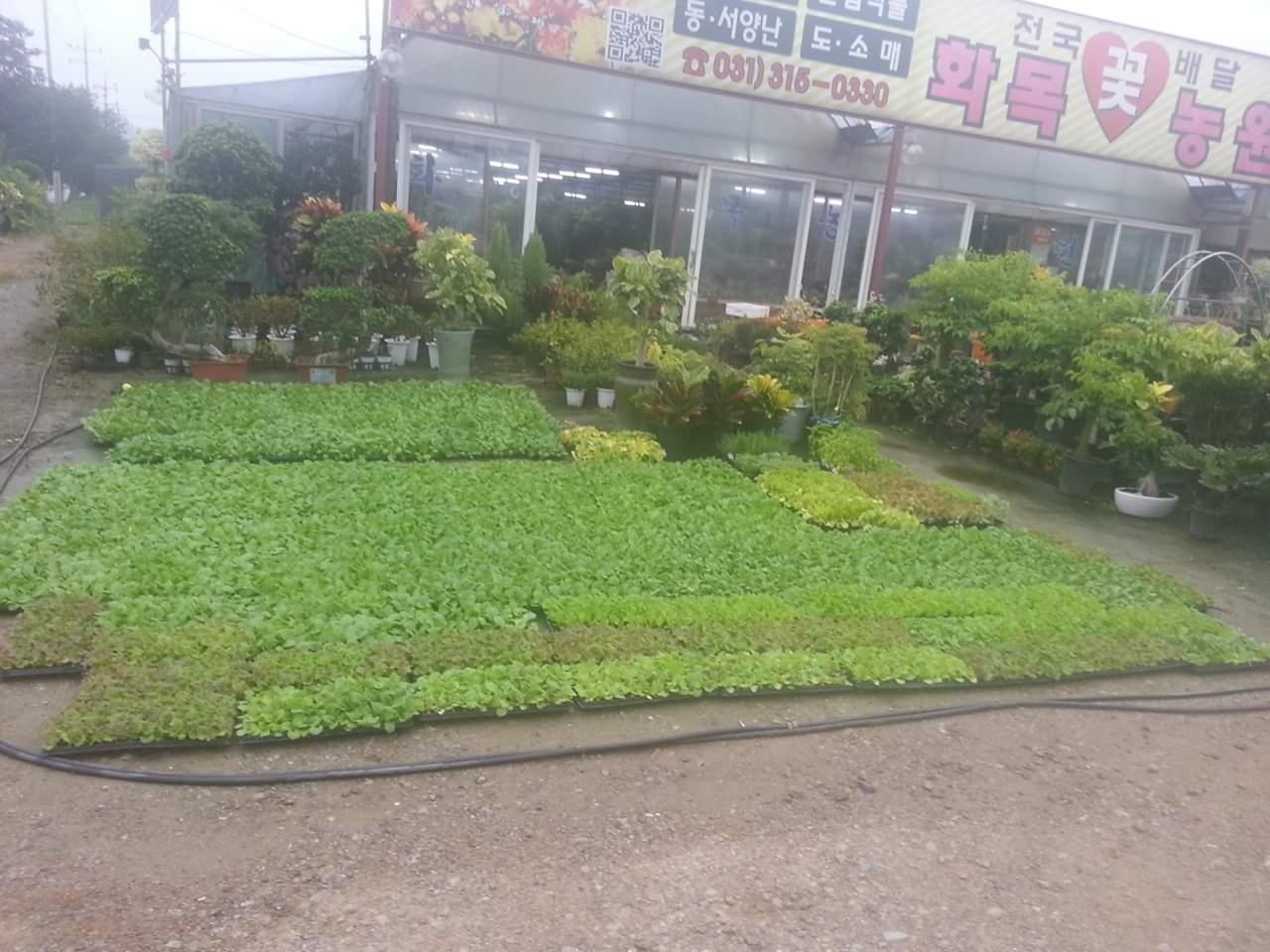 화목꽃농원