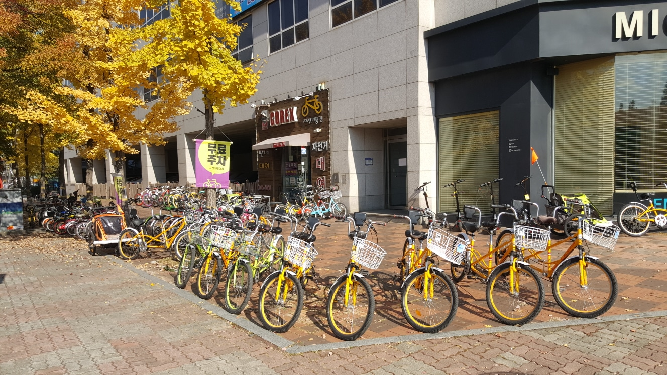 자전거풍경