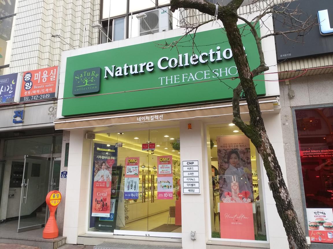 네이처컬렉션 (더페이스샵)충북영동점